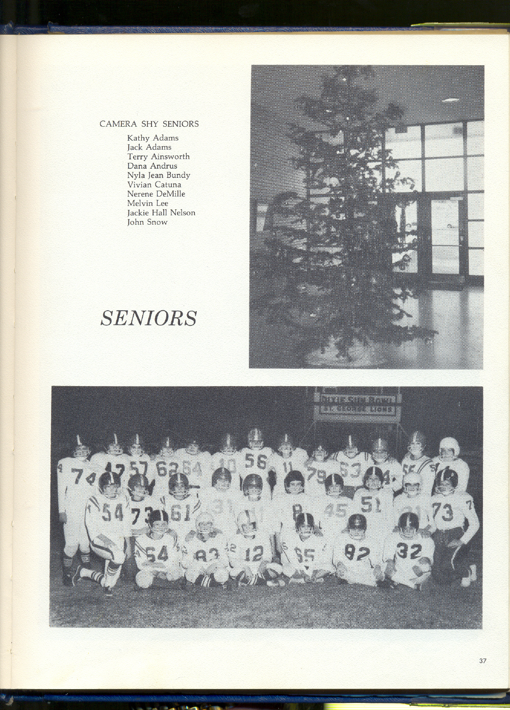 Yearbook37
